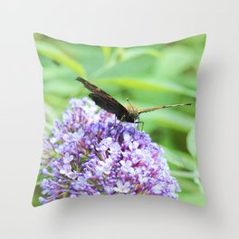 Butterfly X Throw Pillow