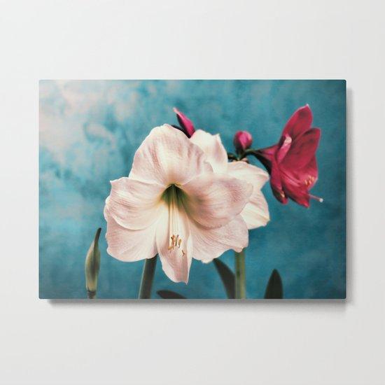 Flowers -a10 Metal Print
