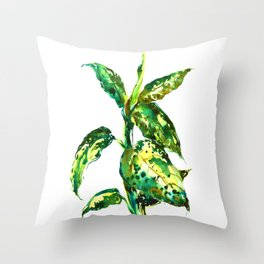 Dieffenbachia plant Throw Pillow