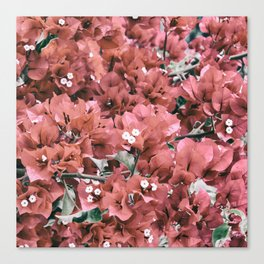 Coral Flowers Pattern Canvas Print