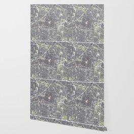 Mexico city map engraving Wallpaper
