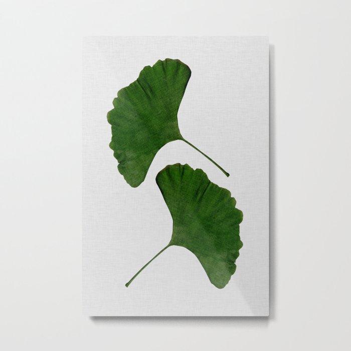 Ginkgo Leaf II Metal Print
