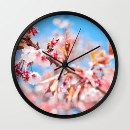 The Bloom   Nature Photography of Pink Japanese Cherry Blossom Flowers Blooming in Spring Wall Clock