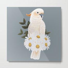Citron Crested Cockatoo Metal Print