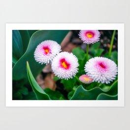Bright Spring Flowers Art Print