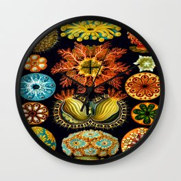 Sea Squirts (Ascidiacea) by Ernst Haeckel Wall Clock