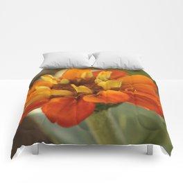 Marigold Flower Comforters