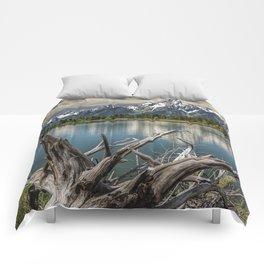 Tree Stump on the Northern Shore of Jackson Lake at Grand Teton National Park Comforters