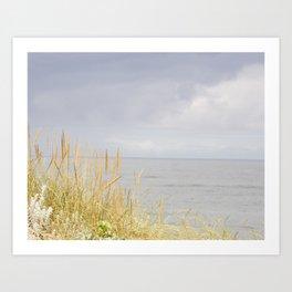 sea and dunes Art Print