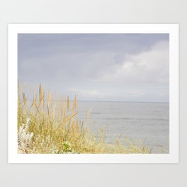 sea and dunes Art Print