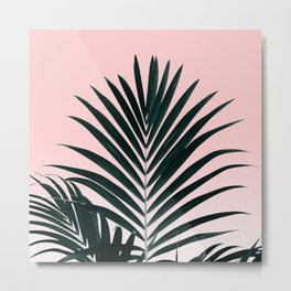 Tropical Green palm tree leaf blush pink gradient photography Metal Print
