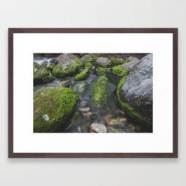 Mill Creek  Framed Art Print