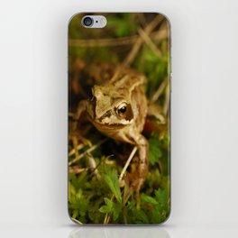 tiny frog iPhone Skin