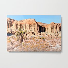 Cactus in the desert with blue sky Metal Print