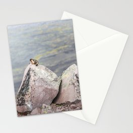 Extremal Groundhog  or King of the Mountain Stationery Cards