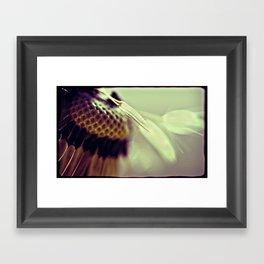 Dandelion Lomo Framed Art Print