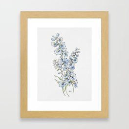 Blue Delphinium Flowers Framed Art Print