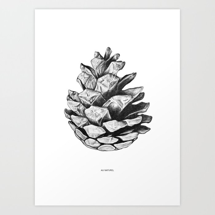 Au naturel art print by hannacandell society6 - Pomme de pin dessin ...