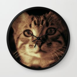 Kitten In The Window Wall Clock