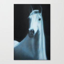 Annakai - The White Spirit Horse Canvas Print