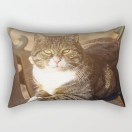 Cute cat relaxing in the sun on old bench Rectangular Pillow