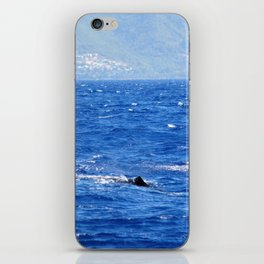 Whale Watching in the Caribbean iPhone Skin