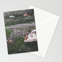 Forest (III) Stationery Cards