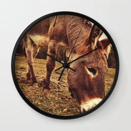 Donkey In The Field Wall Clock