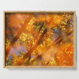 Autumn colors Serving Tray
