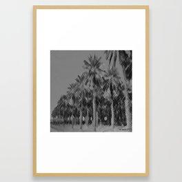 Date Palms in Arizona - Black & White Pencil Drawing Framed Art Print