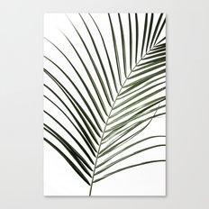 Palm Leaves 8 Canvas Print
