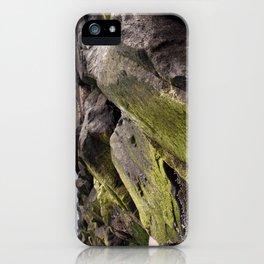 Fishin' on the Rocks iPhone Case