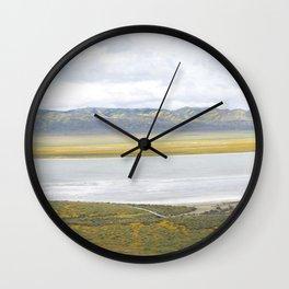 Carrizo Plain Mega Bloom, Central California Wall Clock