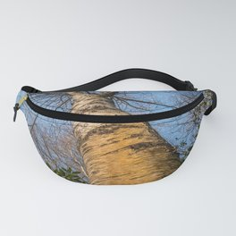 Looking up through the tree branches Fanny Pack