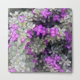Purple Sage Metal Print