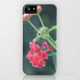 Red on the wall iPhone Case