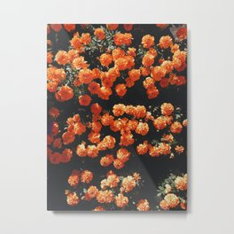 Orange Flowers Everywhere Metal Print