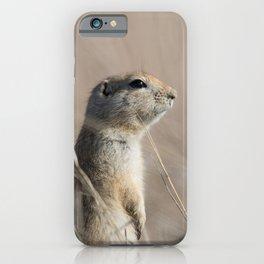 Richardson Ground Squirrel iPhone Case