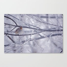 Winter friend 3. Canvas Print