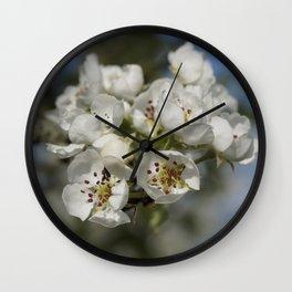 Pear Blossom Wall Clock