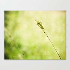 Between Nothing Canvas Print
