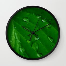 Green Leaf Macro Water Droplets Wall Clock