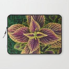 Plant Patterns - Coleus Colors Laptop Sleeve