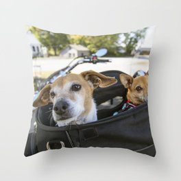 Two dogs Jesse and Maude await the next portion of their ride in the back of a motorcycle in South H Throw Pillow
