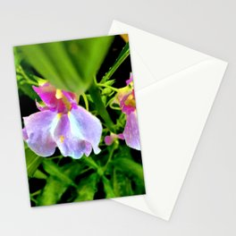 A Sunny Day In The Garden Stationery Cards