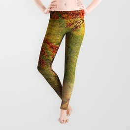 Pretty Autumn Leggings