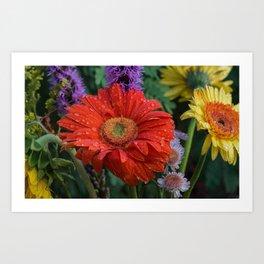 Colorful Wildflowers Art Print