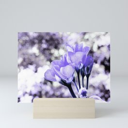 Periwinkle Flowers Mini Art Print