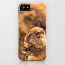 I wasn't going to eat it, I was just going to taste it iPhone Case