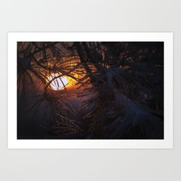 winters warm embrace Art Print
